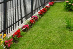 Lawn Fertilizer Company in Crown Point | Blade Cutters Landscaping