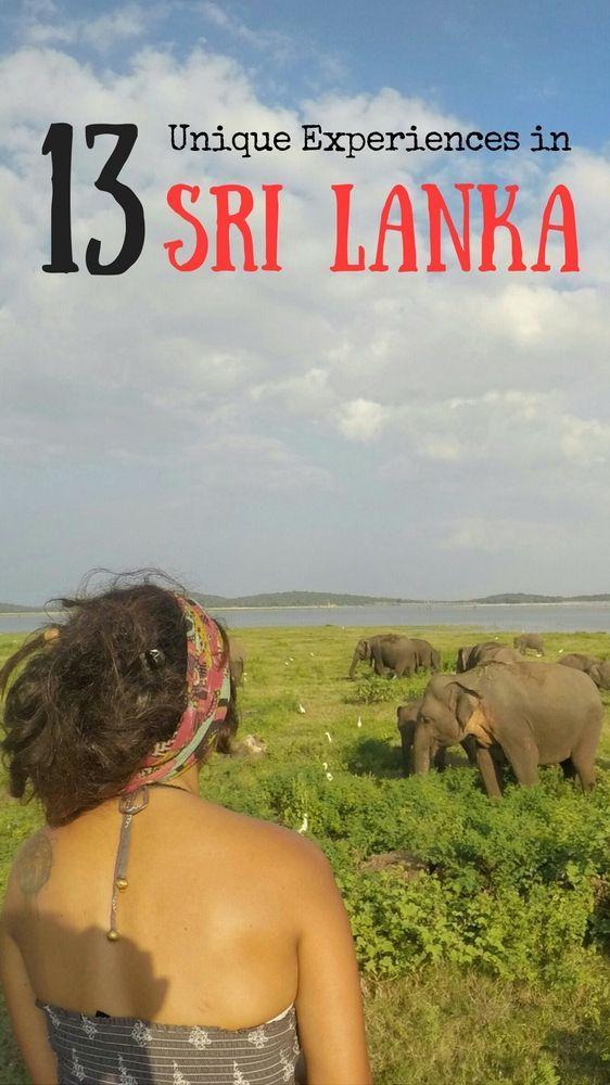 Visit a National Park and See Elephants - Kaudulla National Park, Near Sigiriya - Things to do in Sri Lanka. #SriLanka