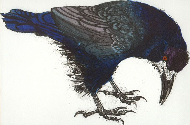 Julia Manning | Somerset Artist & Printmaker| Archive