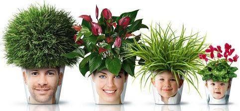 Transparant hoesje op maat knippen,foto insteken,op bloempot plakken,door de foto met het voorhoofd bovenaan aan te plaatsen,krijgt het hoofd een kapsel van planten.