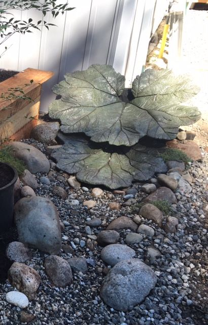 I made a water feature for my downspout out of casted cement gunnera leaves and made a dry creek bed  to draw the water away from our house to the street. Perfect solution and great to look at.