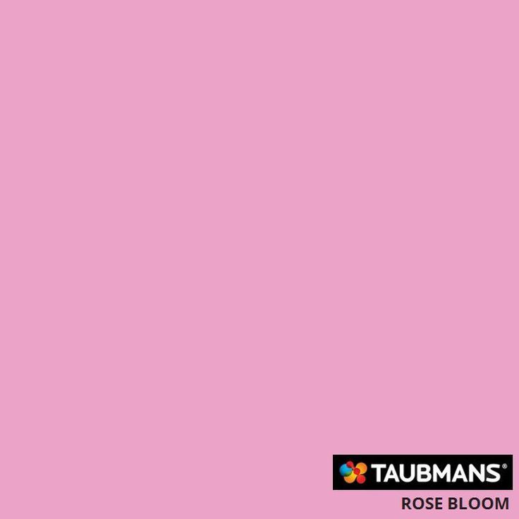 #Taubmanscolour #rosebloom