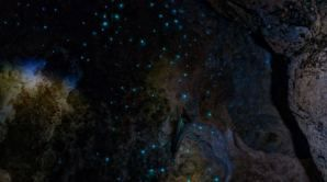 Galaxy of Glow worms