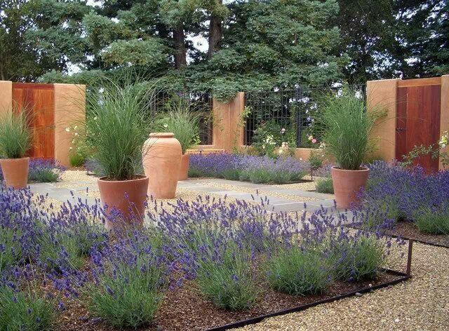 Drought tolerant landscape Backyard Pinterest