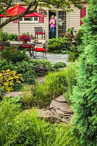 Cool A lush rain garden in a small suburban Chicago backyard saves water reduces pollution and