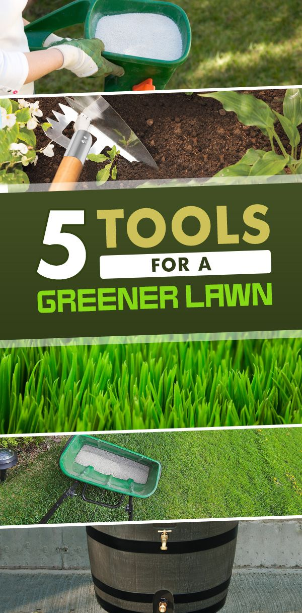 Everyone wants a lush green lawn to enhance their homes curb appeal. All you need are these 5 tools for a greener lawn! It's that simple!