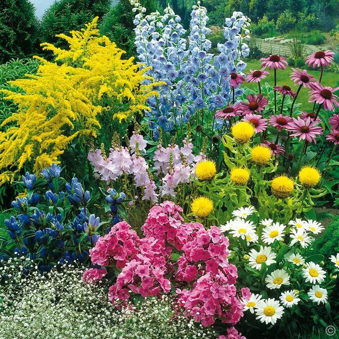 1350 best Gärten, Gartengestaltung und Gartentips images on - gartengestaltungsideen mit kies
