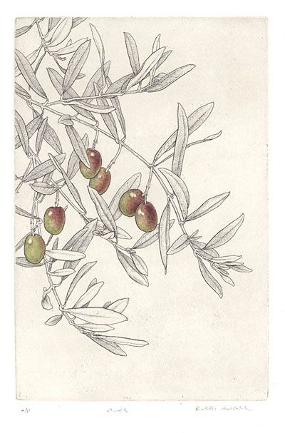 Bobbi Angell - Botanical Illustrator