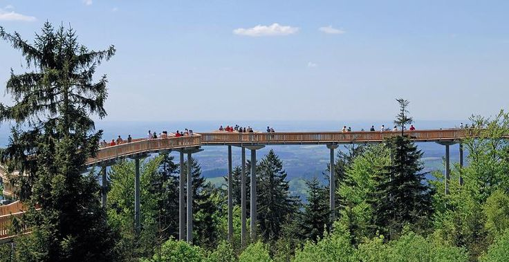 Nochmal Niederbayern, nochmal Bayerischer Wald: In Maibrunn bei St. Englmar gibt es diesen Waldwipfelweg
