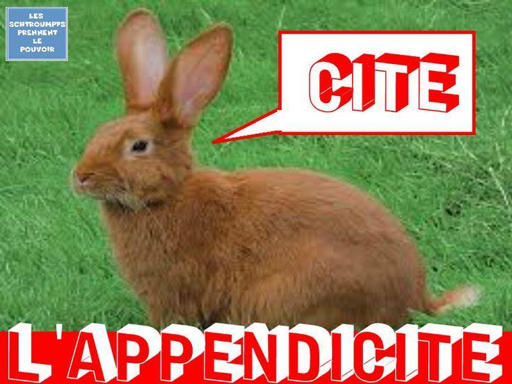 L'appendicite !