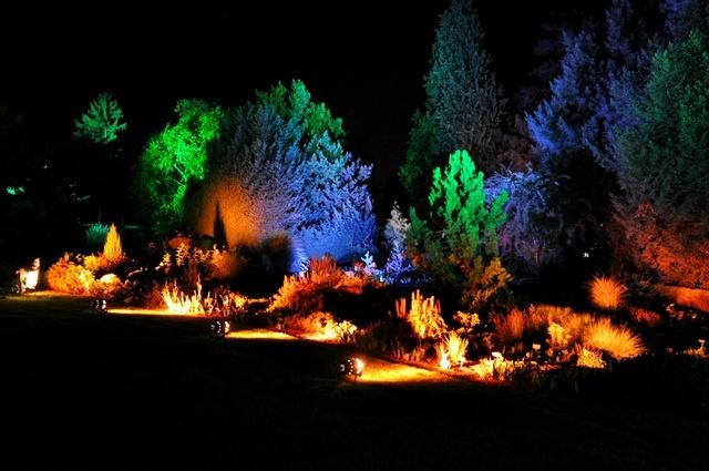 Zoo by night by jibephoto