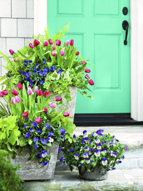 Container Gardens offers great ideas for cozying up a studio apartment or brightening up a front porch.  There are so many gorgeous ways to adorn your home with flowers and foliage, and they have some amazing ideas.