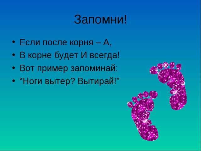Гдз по биологии 10-11 класс беляевой