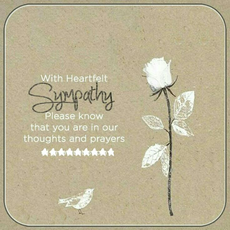 Pin by collette wallace on get well condolences