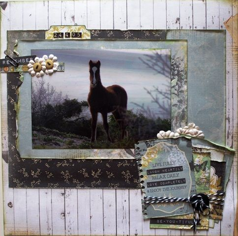 Remember page created with Kaisercraft Pickled Pear by Teena Hopkins for My Scrappin' Shop.