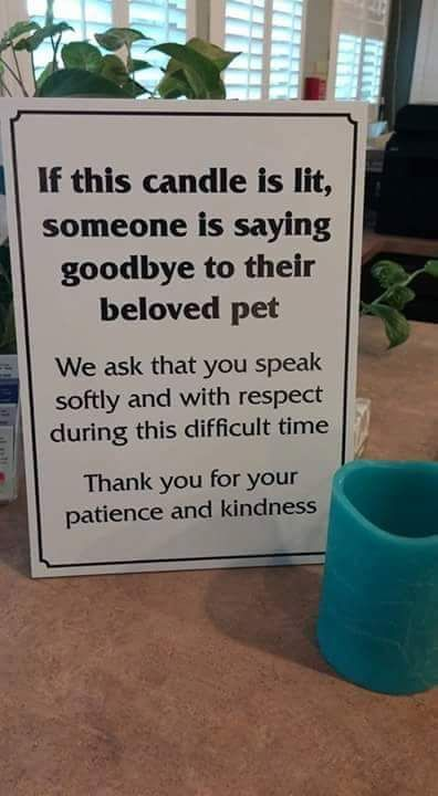 How nice it would be if all veterinary offices had something similar to help the people in the waiting room understand what is happening in an exam room, so people who have lost their animal willr…