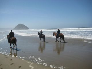 horseback riding on the beach!!