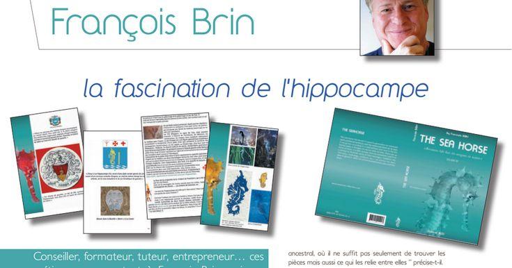 SeaHorse-Collection, Article, Prêt-à-Porter