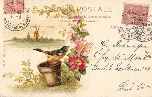 Vintage PostCards-Bird