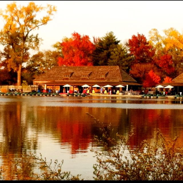 St Louis Forest park... founded in 1876.,  home of the 1904  worlds fair,  our world famous  zoo and many beautiful  museums  all of which  are free ot the   public...  shown  is the boathouse restaurant..  the best fish and chips  and pizza...  so much to do here