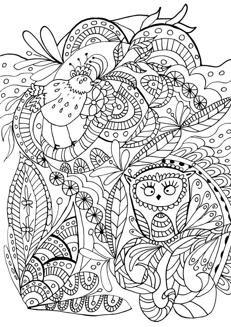 398 best Pajaros 01 images on Pinterest   Coloring books, Colouring ...