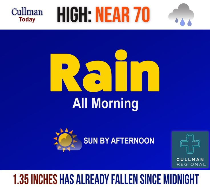 CULLMAN COUNTY WEATHER Monday April 3 2017  LIKE SOAKING SPRING RAINS? YOU ARE IN LUCK - High 70°  TODAY: Cullman County weather has already dropped 1.35 inches of rain since midnight. Precipitation and low-level thunderstorm activity expected into the afternoon hours.  The high temperature should reach 70° with directionally shifting winds up to 20 mph at various points in the day.  Skies should show some clearing and the sun this afternoon.