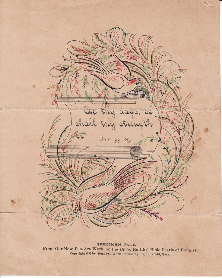 From The Real Pen Work Publishing Co 1887 Pointed Pen