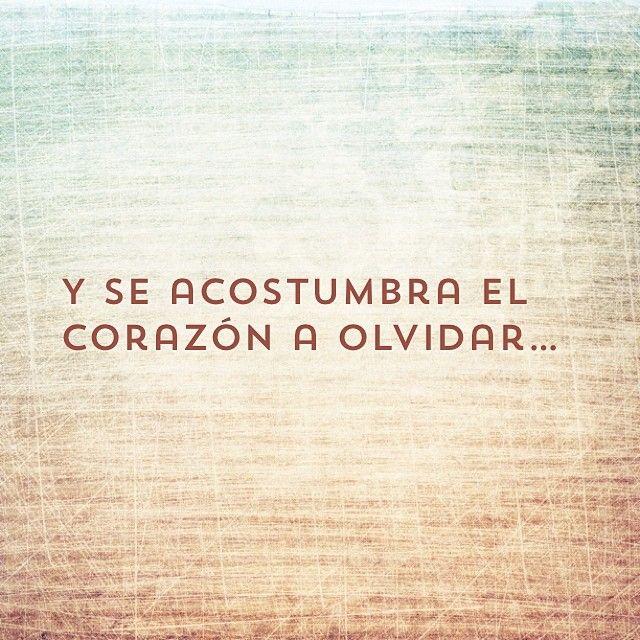 Y se acostumbra el corazón a olvidar. Joaquín Sabina #frases #citas
