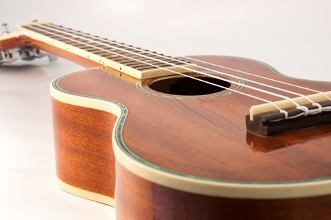 Whether you're looking for a cheap ukulele?