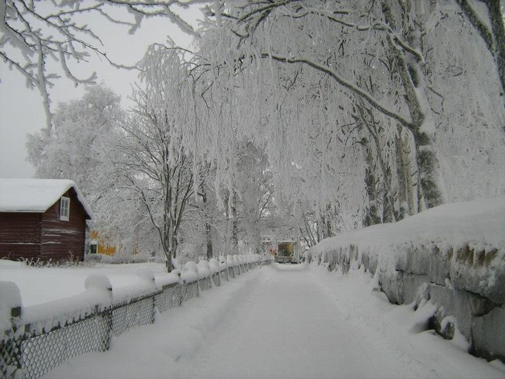 verkalix singles - rent from people in Överkalix, sweden from £14/night find unique places to stay with local hosts in 191 countries belong anywhere with airbnb.