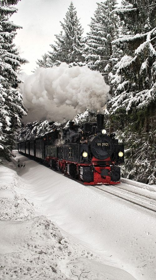 Steam locomotive in the snow- the polar express! I want ride a train in early December in Sweden!