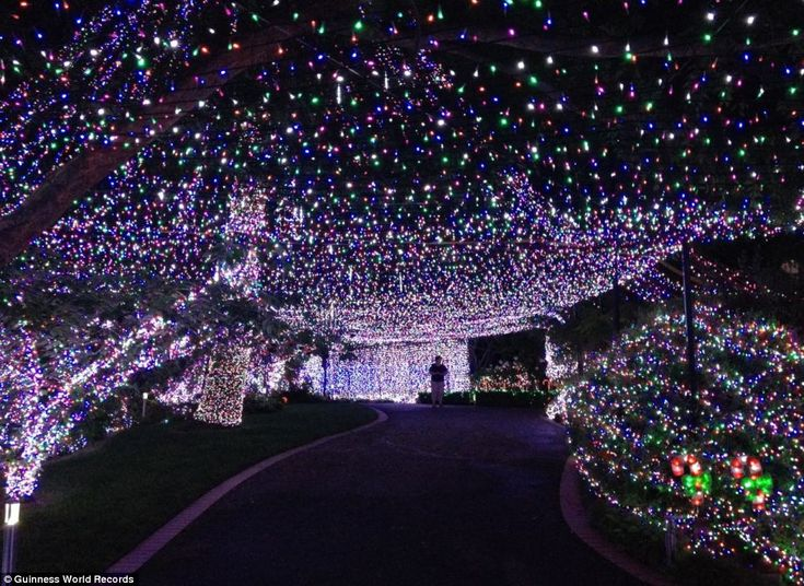 88 best Christmas Lighting and Decor images on Pinterest ...