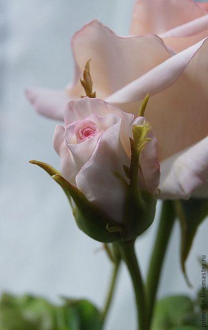 роза с бутонами (холодный фарфор) - роза,роза ручной работы,красный,оранжевый