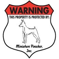 miniture pinscher fence pic - Google Search