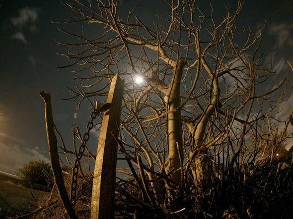 """Coward man lost in his nightmare thoughts Ciao, stiamo partecipando a questo concorso fotografico """"Collezione autunno/inverno"""" per Focus e ci serve il tuo aiuto!!! è semplicissimo!!! Clicca su questo link http://i.focus.it/media/2652971.aspx?rn=1&ss=wet3QHaqYlWz6lNvWZnUbsNTN6ZBxX6ZYHDAUfJqhk52WjnctqYH476SK3b4KbRfC1j1UF6MduRJh1x%252b8KFOVVVFiQMOPjN1aKbhPOLcmc6U6emo2nhJbdnLeAFpDAdjY5L8EuXqiDg%253d, registrati e vota."""