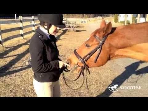 Stuff Riders Say: Part II. Horse people understand.
