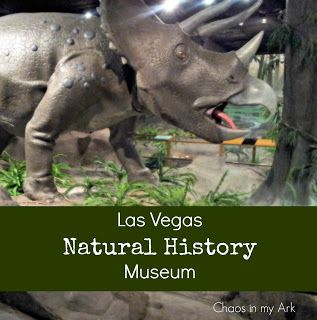 Las Vegas Natural History Museum. Things to do with kids in vegas. Dinosaur museum. summer