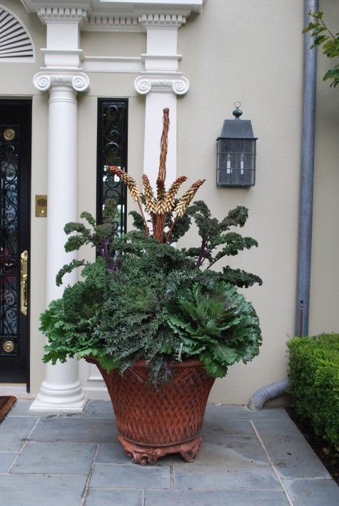 kales and cabbagesGardens Ideas, Fall Containers, Fall Planters, Gardens Container, Flower Pots, Yards Gardens, Gardens Planters, Deborah Silver, Fall Plants