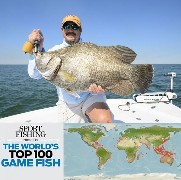 67 best images about saltwater fishing and boating for Fishing spots near me no boat