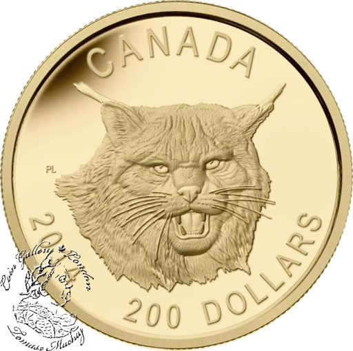 Coin Gallery London Store - Canada: 2014 $200 Fierce Canadian Lynx Ultra High Relief Gold Coin