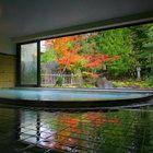 京都・木津温泉 丹後の湯宿 ゑびすや(えびすや)