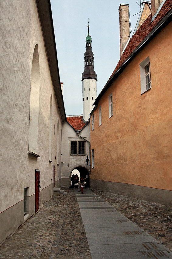 TALLINN: Borsi Passage - O Caminho da História.  Tallinn fica golfo da Finlândia, no Báltico e é a capital da Estónia. A zona medieval é um lugar muito apreciado, pelo ambiente de época ali recriado.
