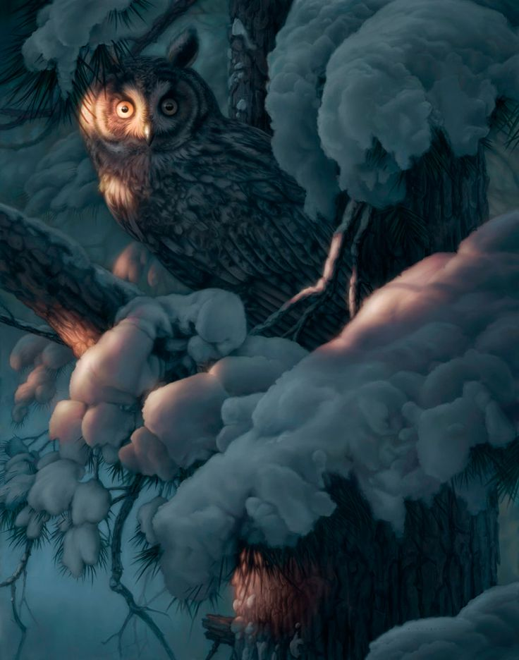 owls...  byLennart Helje