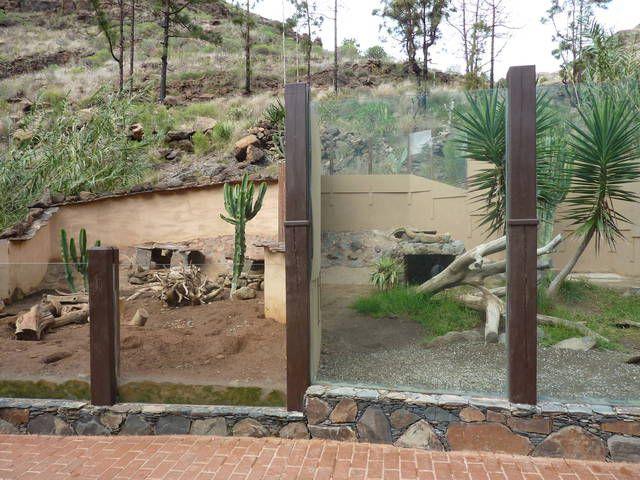Meerkat (l) and Komodo dragon (r) enclosures