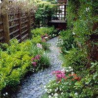 Narrow side yard garden: Washed river rocks, placed Japanese style, create the appealing look of a dry streambed. A lattice fence fronted by a thick Pittosporum hedge adds privacy and minimizes street noise. Clivia azaleas, impatiens, and sweet potato vine supply color.