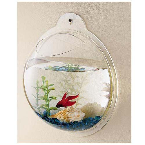 "$24.99-$50.00 Fish Bubbles - Wall Hanging Fish Tank - 3.6L - Introducing Fish Bubbles! These hip and trendy fish tanks can be hung virtually anywhere! They require no pump or filtration! You can decorate your Fish Bubble with any aquarium accessories and keep goldfish, bettas or any other ""easy-to-maintain"" fish in a cool happy home on a wall! You can also create a wall hanging terrarium! Buy 3 o ..."