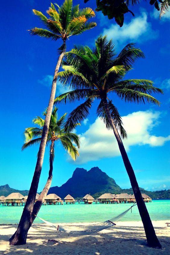 View on Mount Otemanu, Bora Bora, Society Islands, French Polynesia #aromabotanical