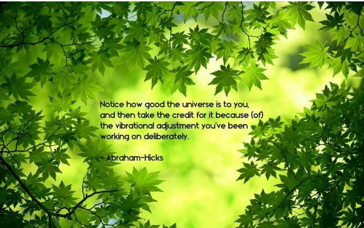 Notice how good the Universe is to you