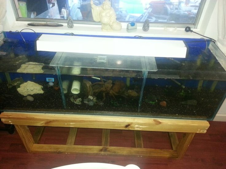 13 best recycling pallets images on pinterest recycling for Pallet aquarium stand