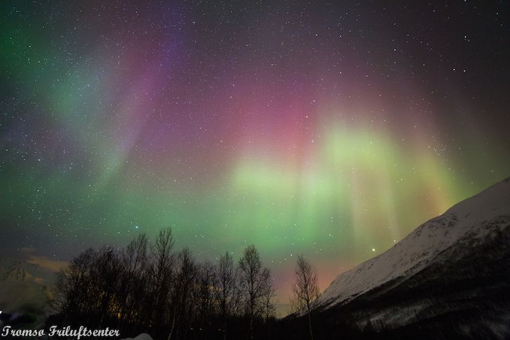 Why you should do an Aurora tour in Tromsø